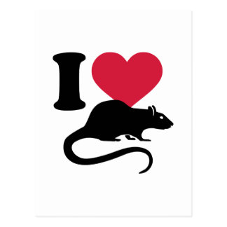 I love Rats Postcard