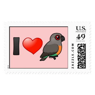 I Love Red-bellied Parrots Postage