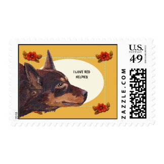 I Love Red Kelpie & Autumn Floral USA Postage