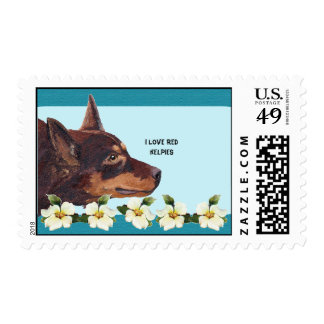 I Love Red Kelpie & Turquoise Floral USA Postage