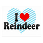 I Love Reindeer Postcard