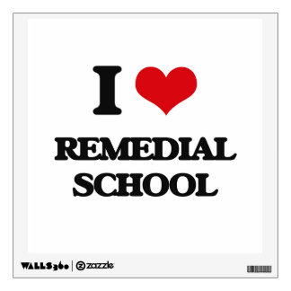 I Love Remedial School Wall Stickers