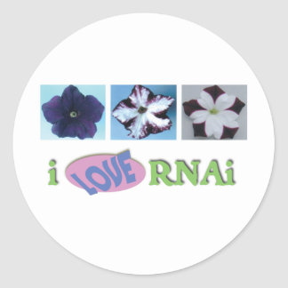 I love RNAi set Classic Round Sticker