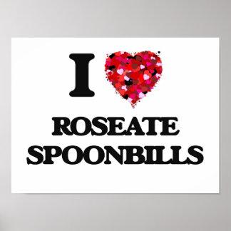 I love Roseate Spoonbills Poster
