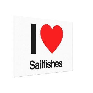 i love sailfishes gallery wrap canvas