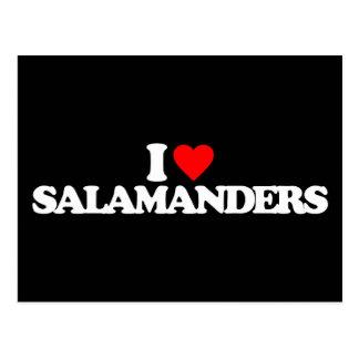 I LOVE SALAMANDERS POSTCARD