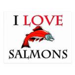 I Love Salmons Postcard