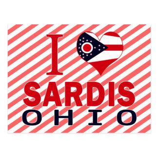 I love Sardis, Ohio Postcard