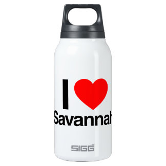 i love savannah 10 oz insulated SIGG thermos water bottle