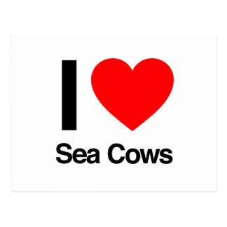 i love sea cows postcards