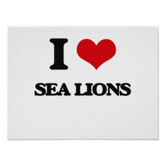 I Love Sea Lions Poster