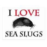 I Love Sea Slugs Postcard