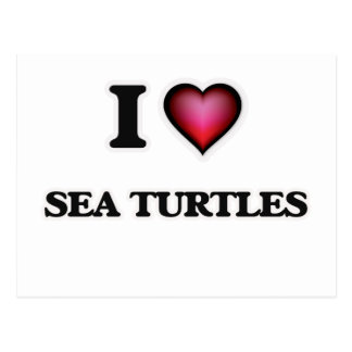 I Love Sea Turtles Postcard