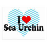 I Love Sea Urchin Postcard