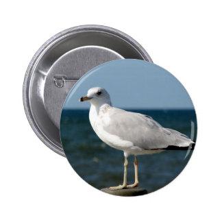 I love Seagulls! 2 Inch Round Button