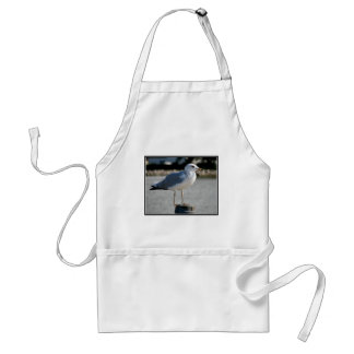 I love Seagulls! Aprons