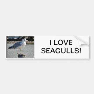 I love Seagulls! Bumper Sticker