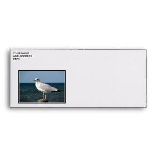 I love Seagulls! Envelopes