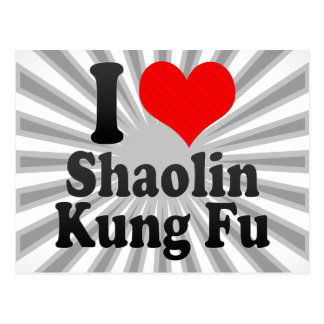 I love Shaolin Kung Fu Postcard