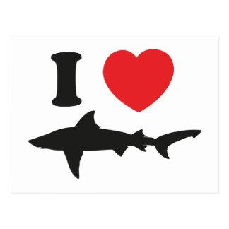 I Love Sharks Postcard