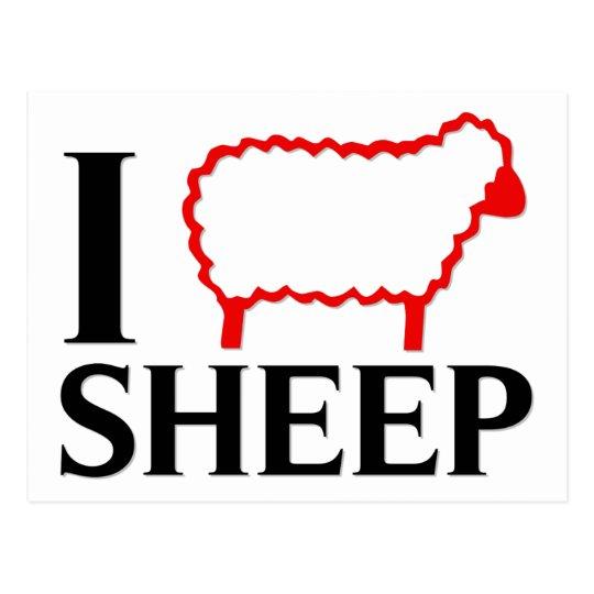 I Love Sheep Postcard