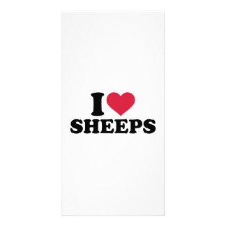 I love Sheeps Photo Card
