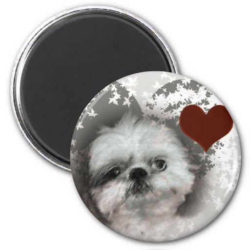 I Love Shih-Tzus Fridge Magnet
