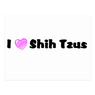 I Love Shih Tzus Postcard