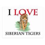 I Love Siberian Tigers Post Cards