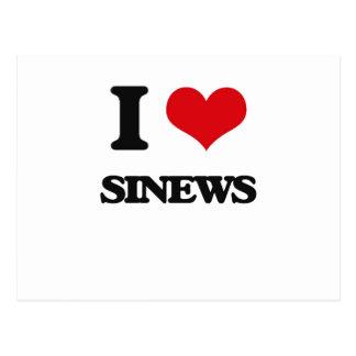 I Love Sinews Postcard