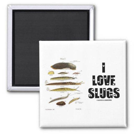 I Love Slugs (Naturalist / Nature) 2 Inch Square Magnet