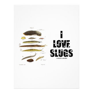 I Love Slugs (Naturalist / Nature) Letterhead