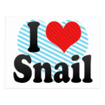 I Love Snail Post Cards