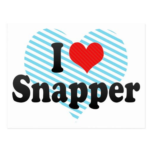 I Love Snapper Postcard