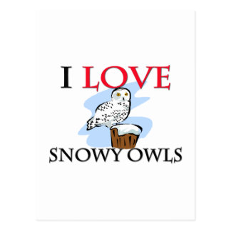 I Love Snowy Owls Post Cards