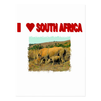 I Love South Africa Rhinos and reeds Postcard