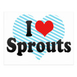 I Love Sprouts Postcard
