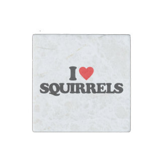 I LOVE SQUIRRELS STONE MAGNET