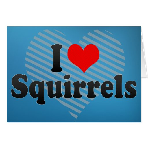 I Love Squirrels Greeting Card