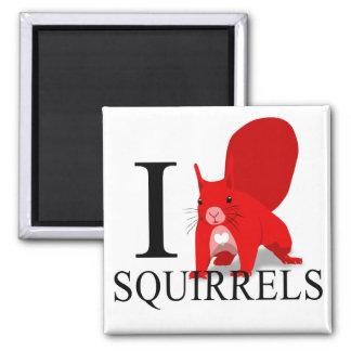 I Love Squirrels Magnets