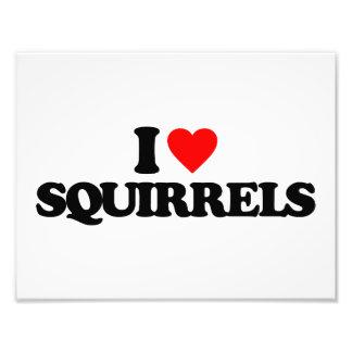 I LOVE SQUIRRELS PHOTOGRAPHIC PRINT