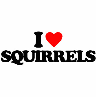I LOVE SQUIRRELS ACRYLIC CUT OUTS