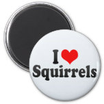 I Love Squirrels Refrigerator Magnets
