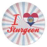 I Love Sturgeon, Missouri Plates