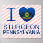 I Love Sturgeon, PA Posters