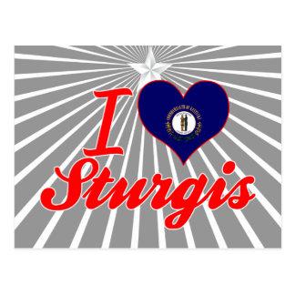 I Love Sturgis Kentucky Post Card