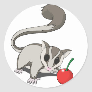 I Love Sugar Glider Classic Round Sticker