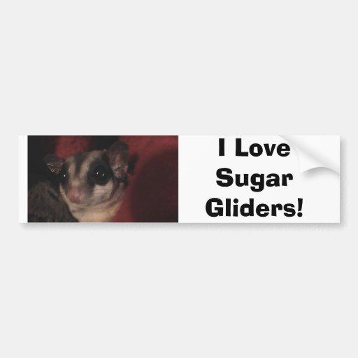 I Love Sugar Gliders! Bumper Stickers