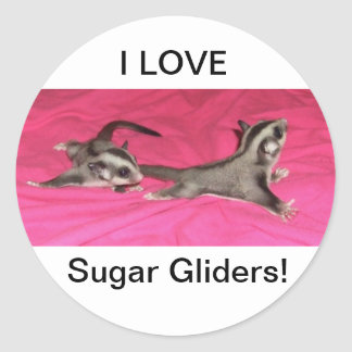 I LOVE Sugar gliders! STICKER