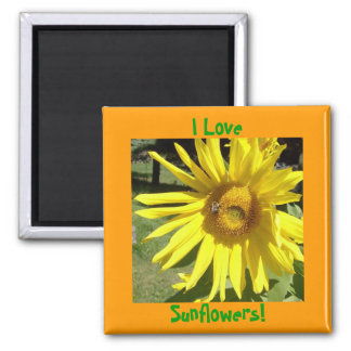 I Love, Sunflowers! Magnet